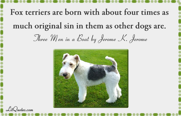 Fox terriers Quote
